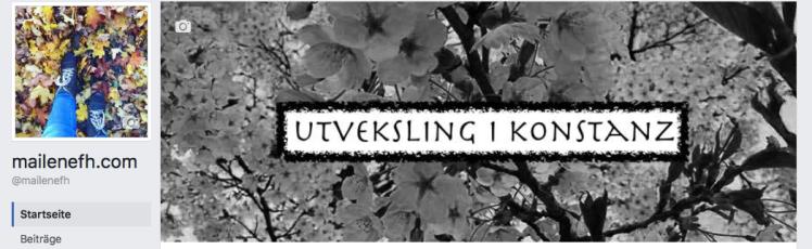Skjermbilde 2017-05-04 kl. 14.58.49